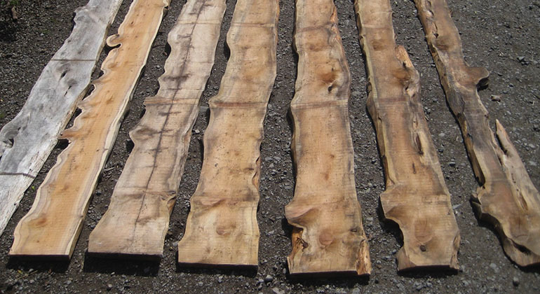 Rough & Dried Timber